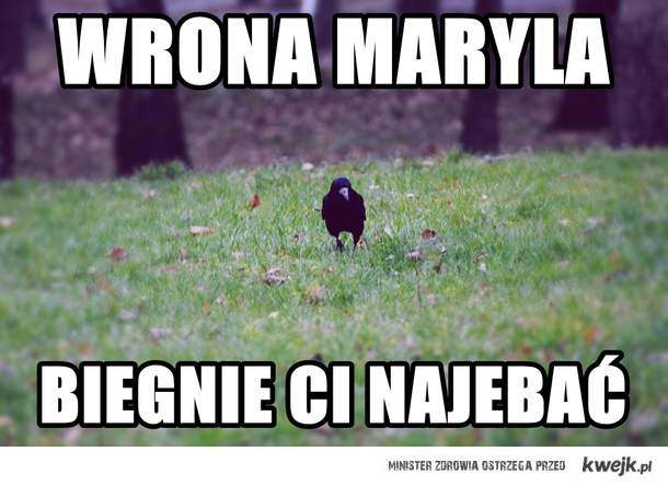 Wrona Maryla
