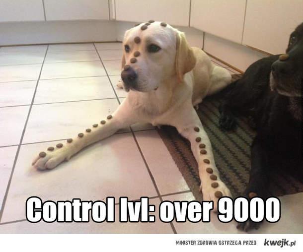 Samokontrola