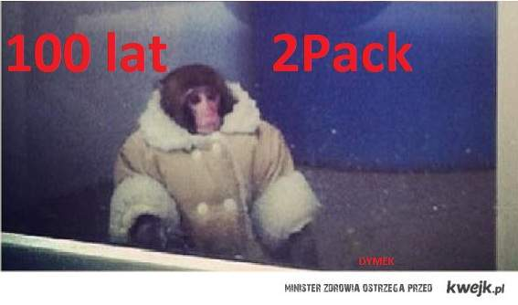 2 pack i urodzinowa lucynka