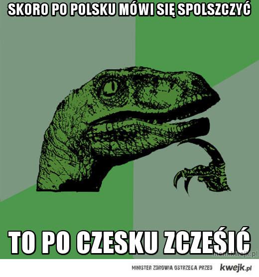 Skoro po polsku mówi się spolszczyć