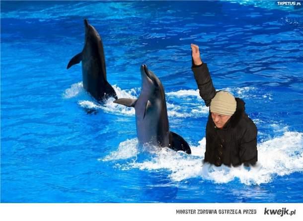 Zbyszko 3 Delfiny