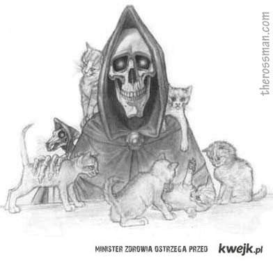 Śmierć też uważa, że koty są najlepsze