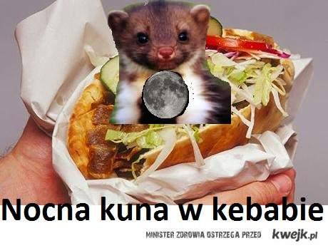 Nocna kuna w kebabie