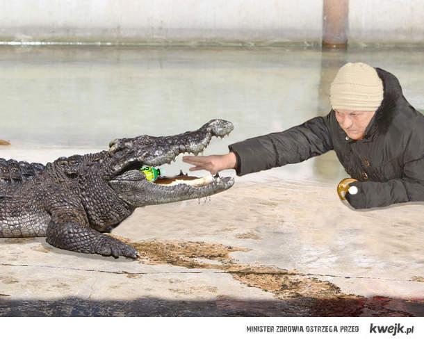 chytra baba vs krokodyl
