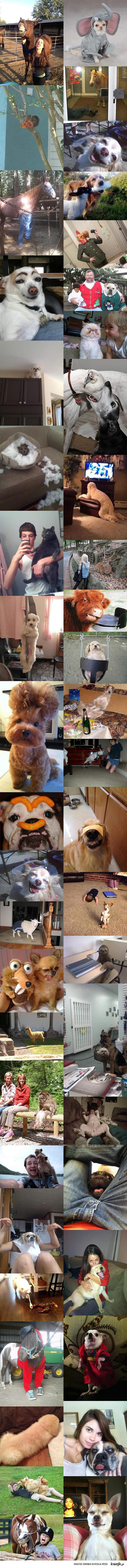WTF 2012 ze zwierzętami