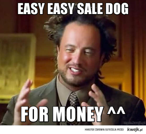 easy easy sale dog