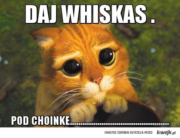 daj whiskas .