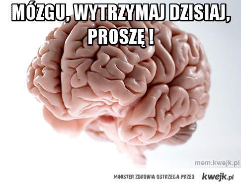 Mózgu, Wytrzymaj dzisiaj, proszę !