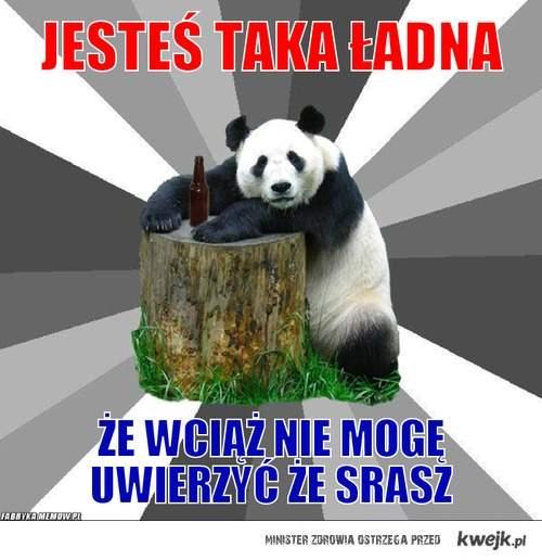 romantyczna panda barowa