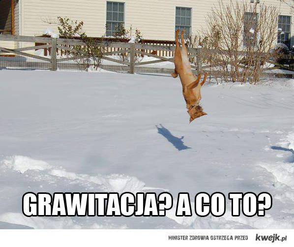 Grawitacja?