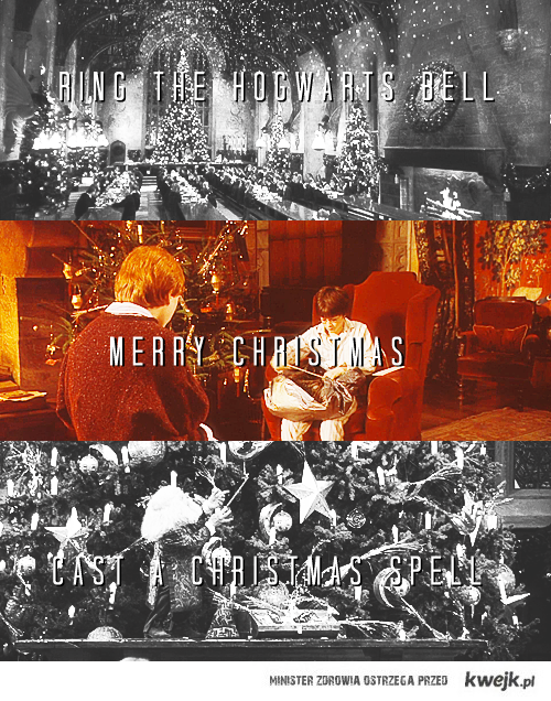 Harry Potter is my love.