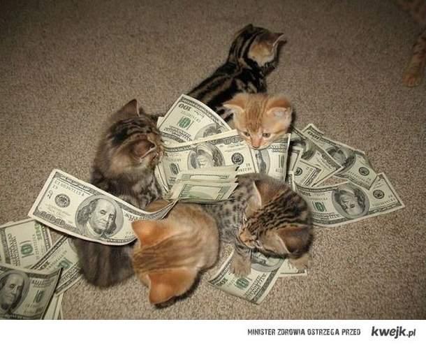 money,money money
