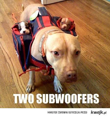 ...::Dwa subwoferki::...