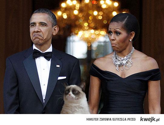 Grumpy Cat Obama