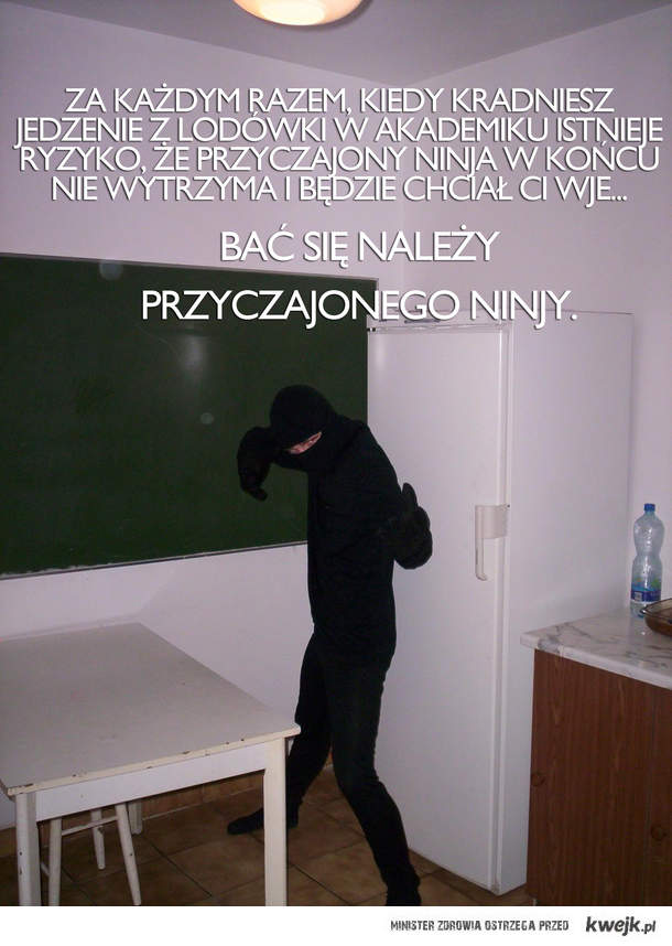 Przyczajony ninja