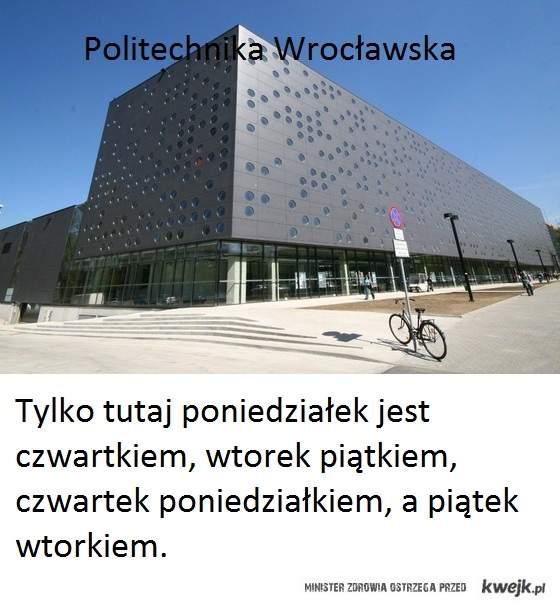 polibuda