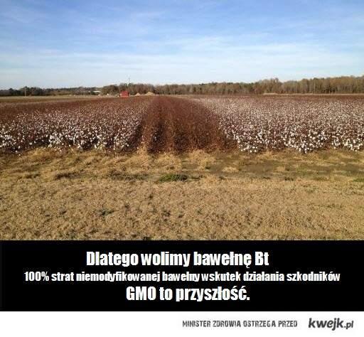 GMO to przyszłość