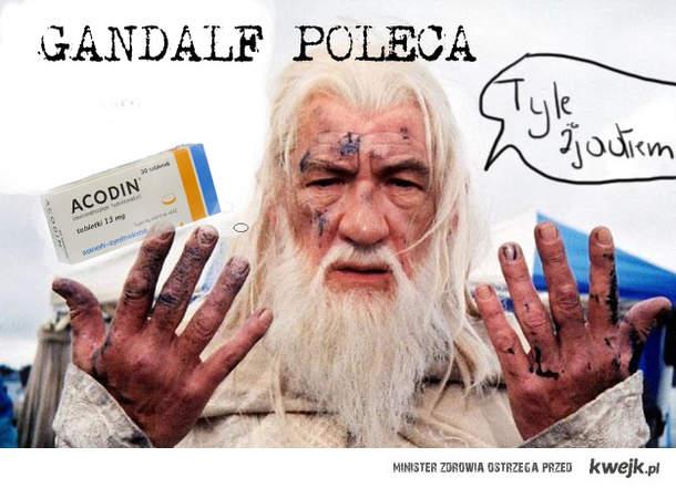 Accodin dla Gandalfa