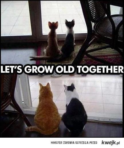 Dorośnijmy razem
