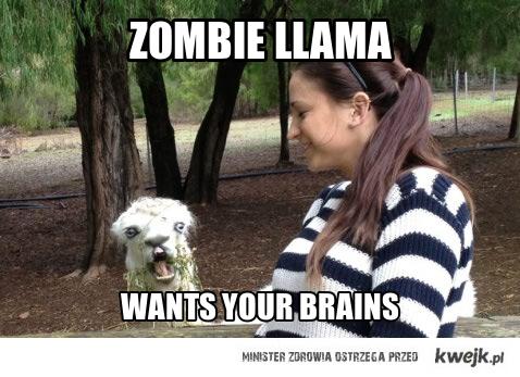 zombie llama