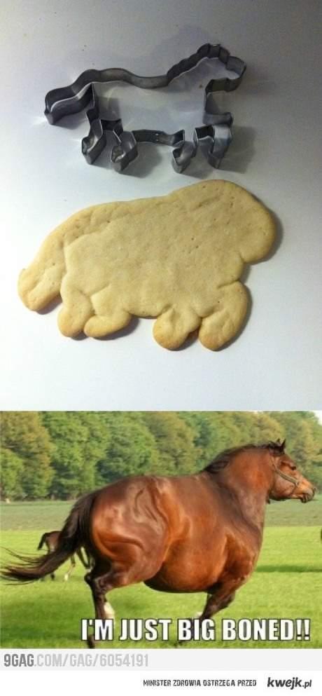 Koń xD