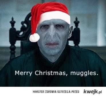Merry Christmas Muggles :3