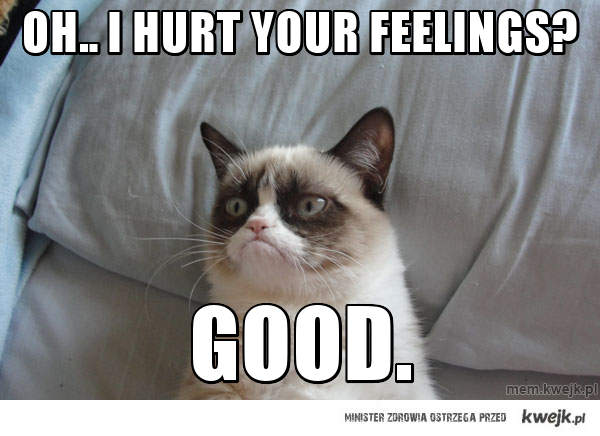 oh.. i hurt your feelings?