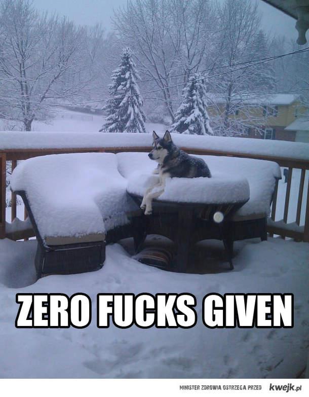 Dokładnie zero