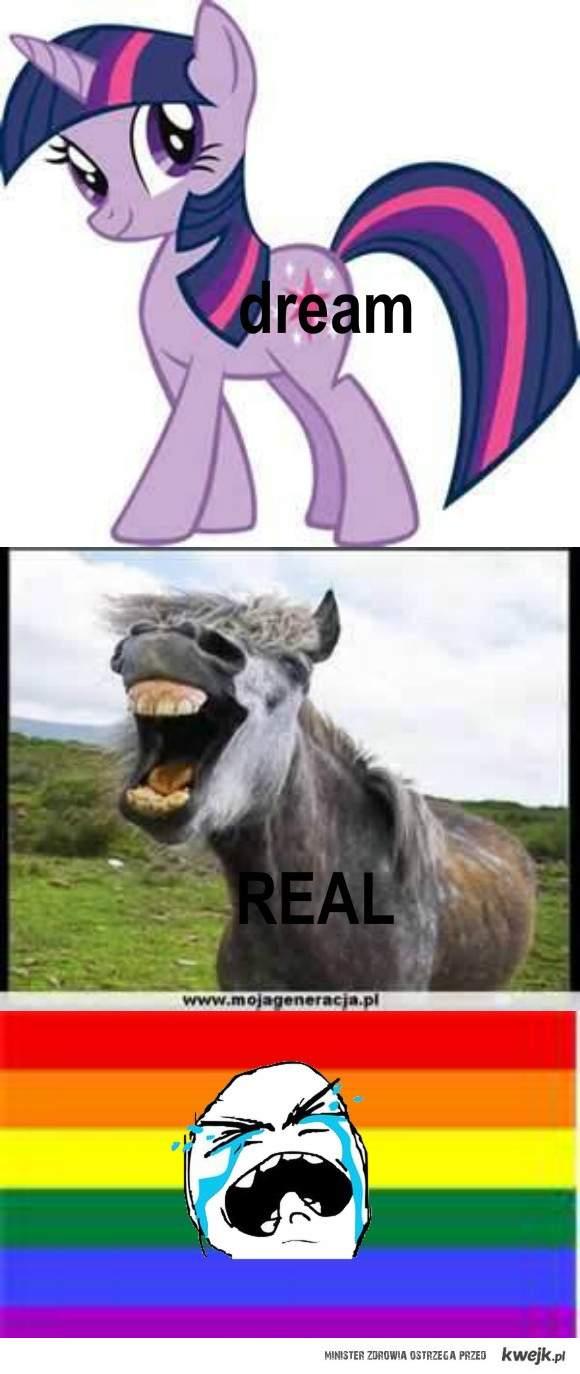 Prawdziwy koń