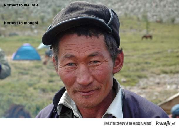 Mongoł Norbert