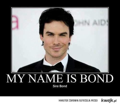 Mr Sire Bond