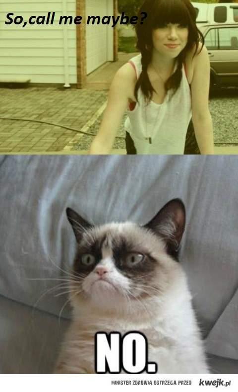 Jepsen & cat