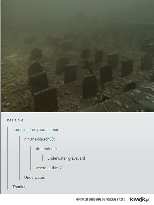 Podwodny cmentarz