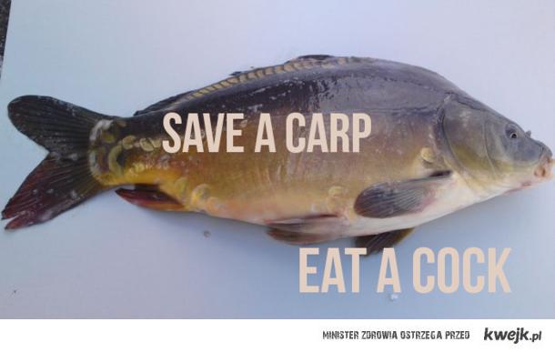save a carp
