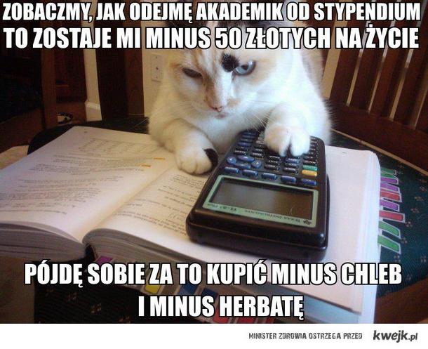 Kot student