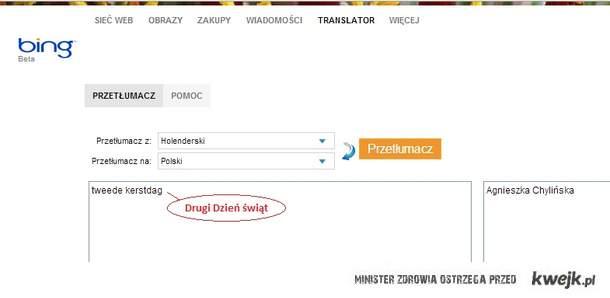Tłumaczenie Bing