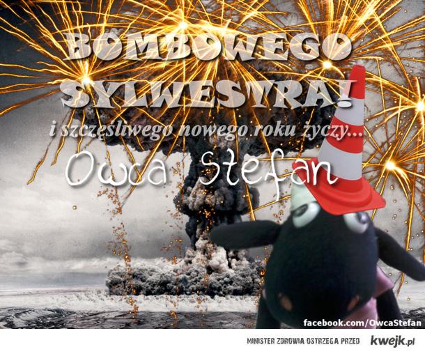 Owca stefan na nowy rok