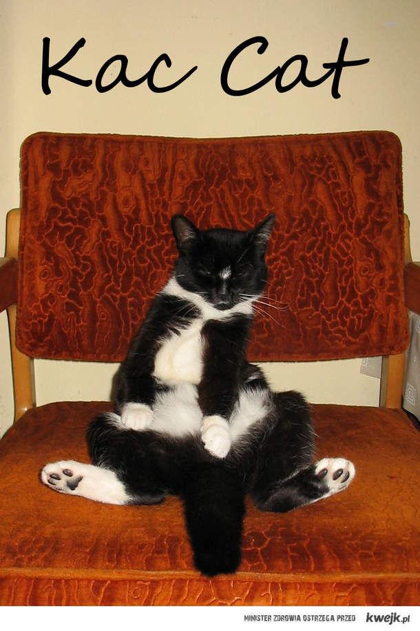 Kac Cat