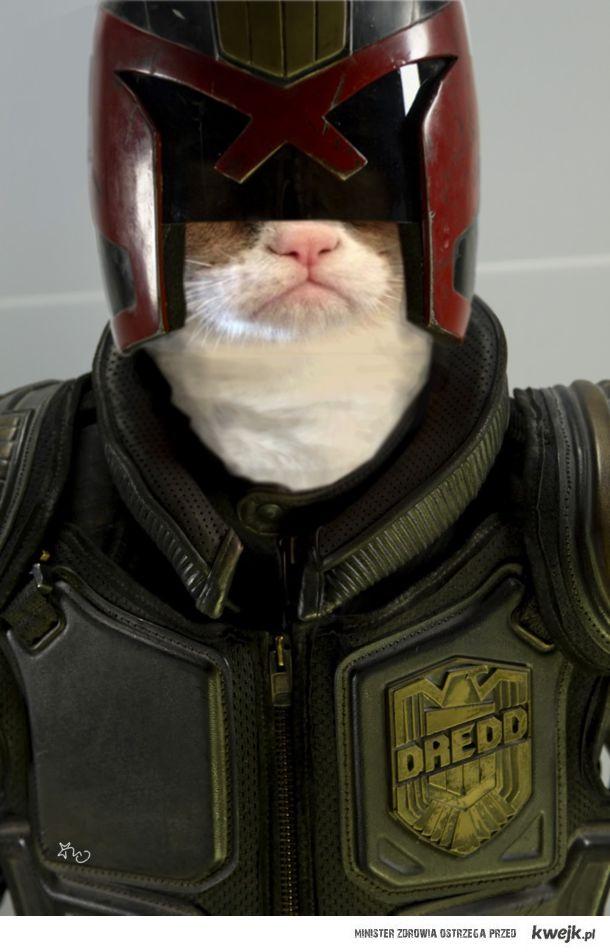 Grumpy Dredd