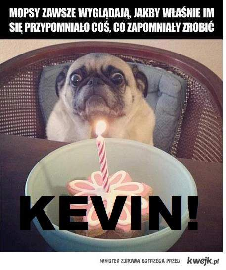 KEVIN!