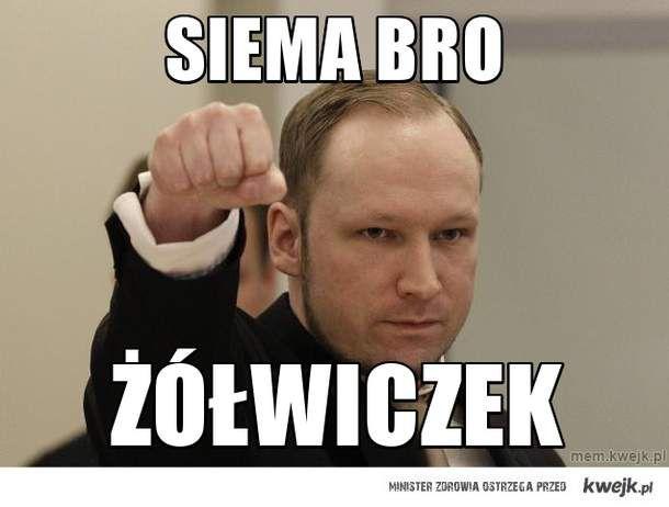 siema bro