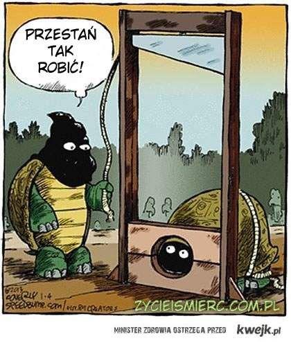 Egzekucja żółwia