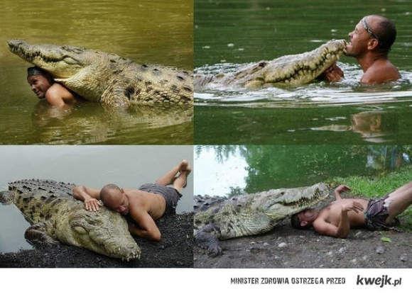 takie tam z krokodylem
