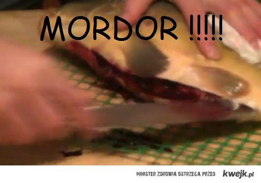 MORDOR !!!!!!!!!!!