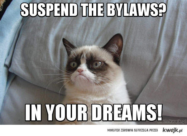 suspend the bylaws?