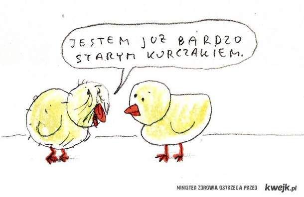 stary kurczak raczkowski