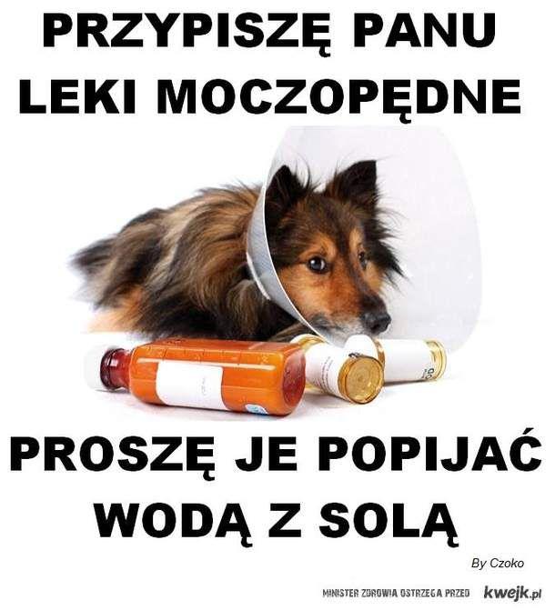 Pies farmaceuta