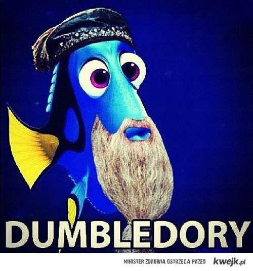 DumbleDory