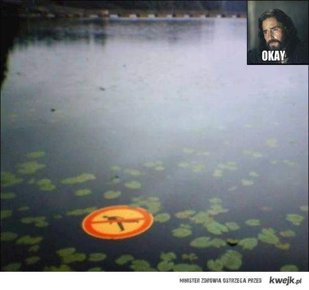 okay:<