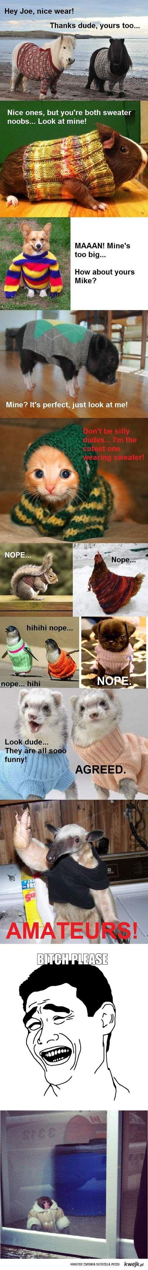 Swetry swetrami. Jest Lucynka!